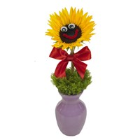"""Sunny and Bright Wishes"" flower bouquet (BF147-11)"